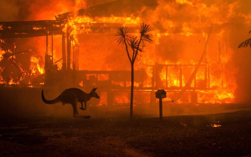 Australian bushfires by Matthew Abbott