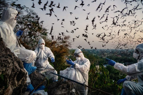 Panos photographers win Pictures of the Year (POY) awards